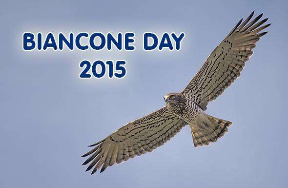 Biancone Day 2105 (foto liguria binding)