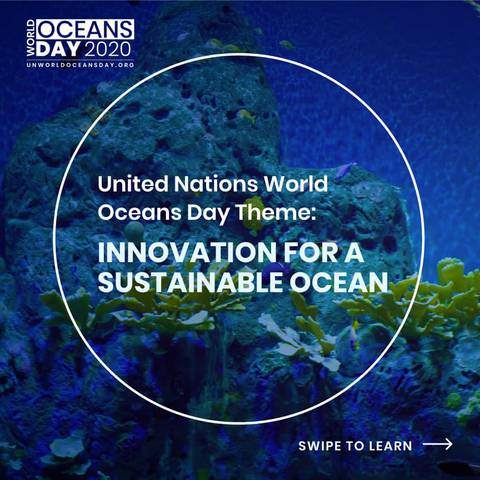 World Oceans Day (fonte United Nations)